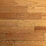 hard wood floors steam cleaner