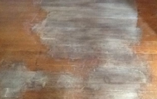 how to get dog urine out of wood floor