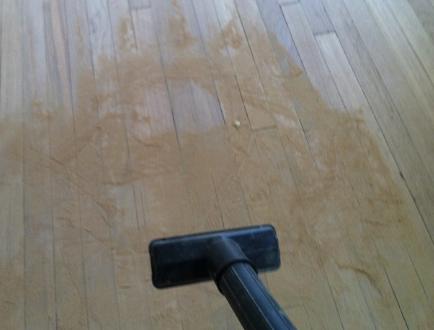 Clean Hardwood Floors After Sanding
