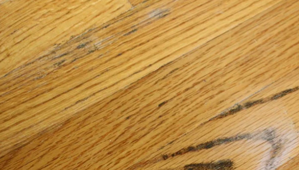 mold on hardwood floors